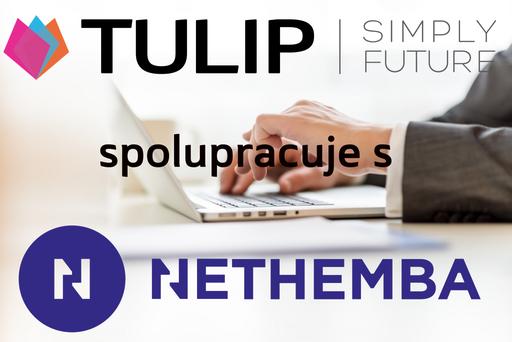 tulip_spoluprace_s_nethemba